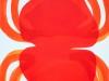 Traces rouges / 32 x 25 cm / 2011