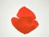 Double, rouge / 48 x 65 cm / 2011